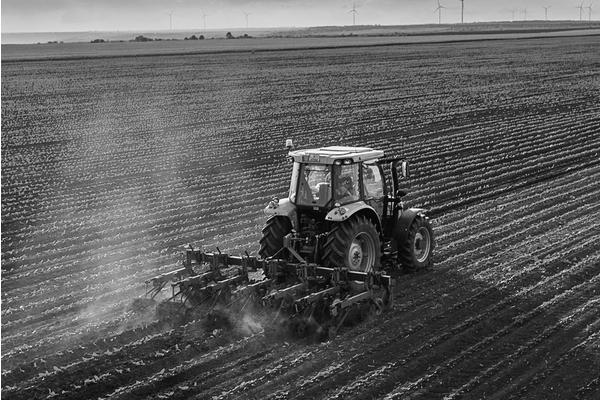 Big sq agriculture
